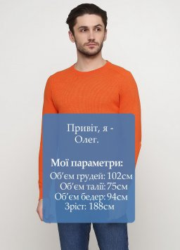 Свитер мужской Tom Tailor 160893-catalog